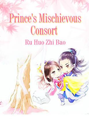 Prince's Mischievous Consort