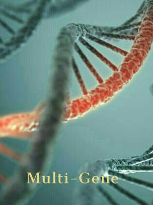 Multi Gene